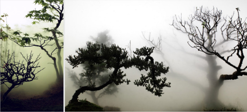 landscape in the mist wu chi tsung