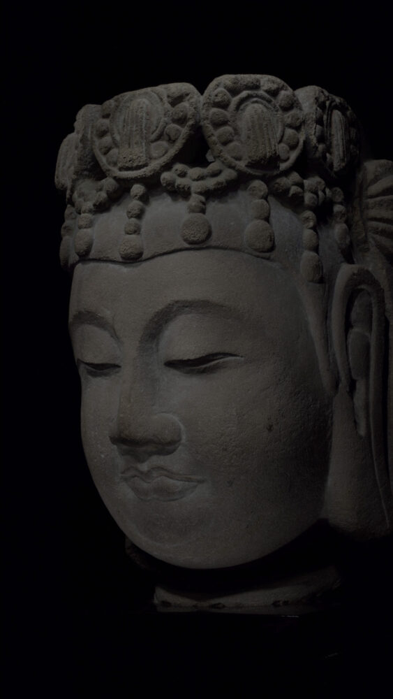 Drawing Study - Limestone Head of Bodhisattva, Sui Dynasty