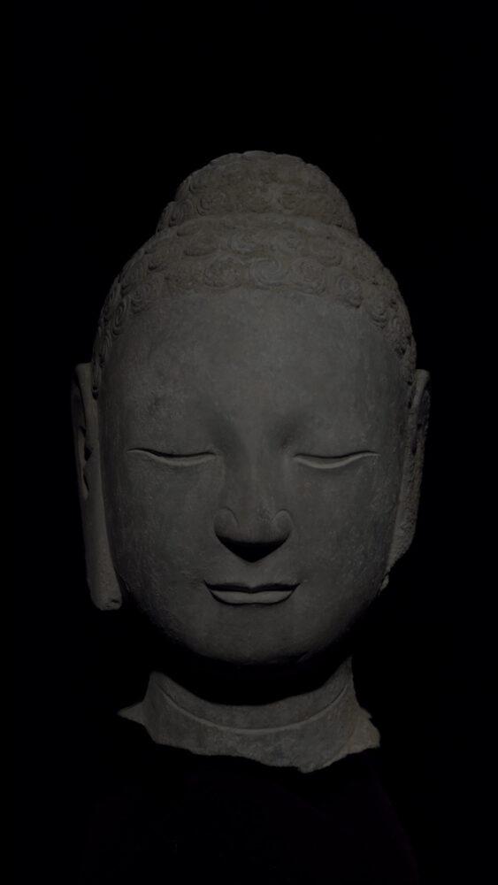 Drawing Study - Limestone Head of Buddha, Northern Qi Dynasty